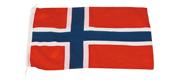Gæste flag Norge 20x30 cm