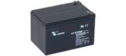 AGM batteri Vision 12 Ah