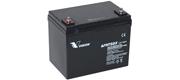 AGM batteri Vision 75 Ah